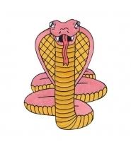VALLEY CRUISE Cobra Back Patch by Luke Pelletier
